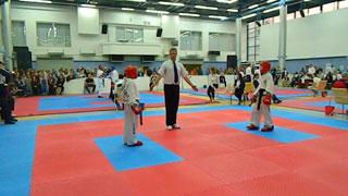 Спортивная секция Taekwondo, г.Мариуполь